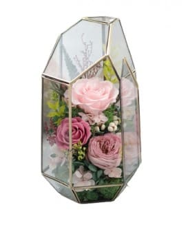 Preserved Fresh Flowers - Gentle as You