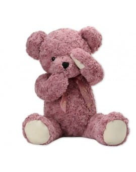 Shy Teddy Bear Toy - Pink