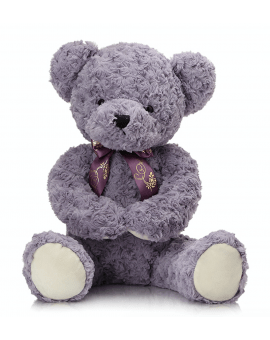 Shy Teddy Bear Toy - Purple