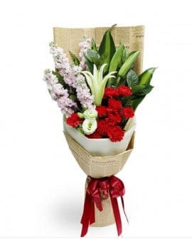 11 Red Carnations with 6 Lilies