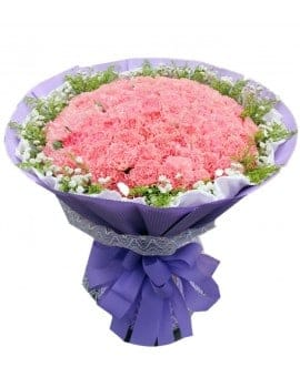 99  Pink Carnations