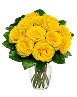 11 Yellow Roses in Vase