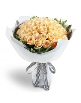 33 Champagne Roses