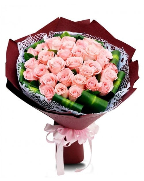 33 Pink Roses